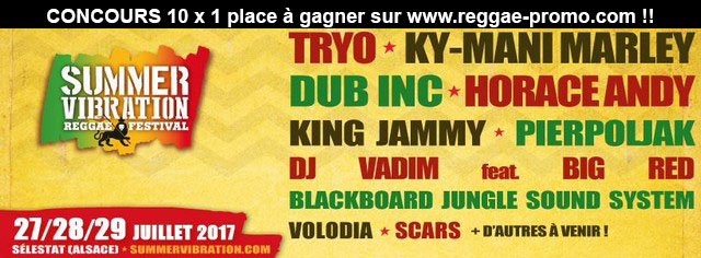 Summer Vibration Reggae Festival fly