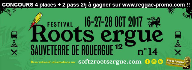 Roots Ergue Festival fly