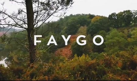 faygo video